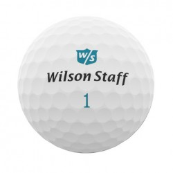 Мячи для гольфа Wilson Staff Dx2 Soft Women белые